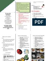 Leaflet Gastriris