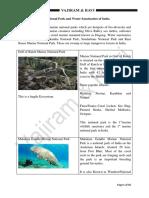 Environment Vaji.pdf