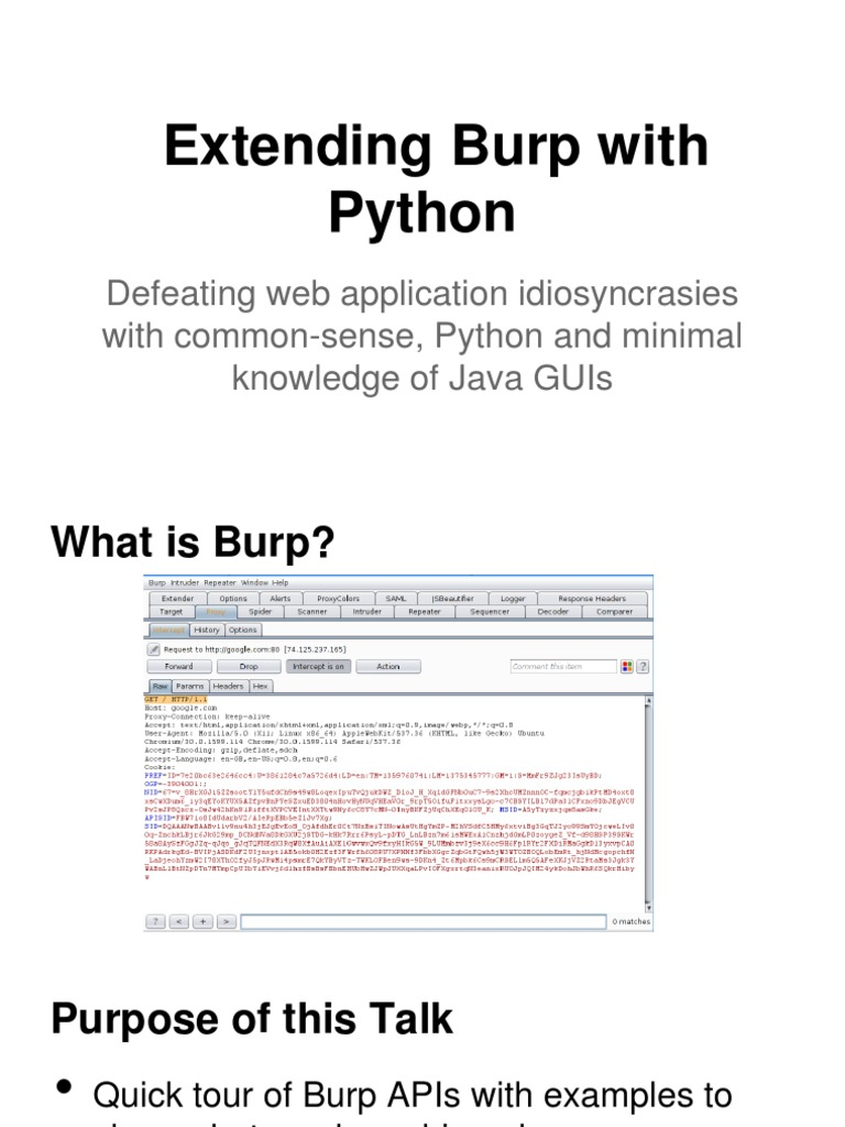 Extending Burp With Python | Http Cookie | Application