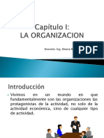 Capítulo i La Organizacion