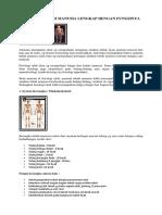 Anatomi Tubuh Manusia Lengkap Dengan Fungsinya