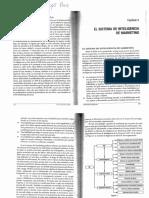 Paris-Marketing Esencial-Cap 5-El Sistema de Inteligencia de Marketing.pdf