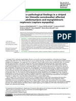 Clinico-pathological Findings in a Striped Dolphin