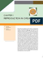 Rudiments Of Biology Pdf