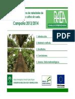 Raea Fresa 2014 Cultivo Sin Suelo 1.2