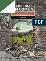 Rebeldías en común - Sobre comunales, nuevos comunes y economías cooperativas