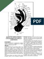 Auriculoterapia De Lipszyc.pdf