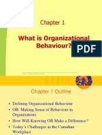 Chapter 1-What is Organizational Behaviour