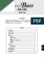 08_slb100_zh_1117_web