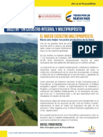 boletinno5asivaelposconflicto.pdf