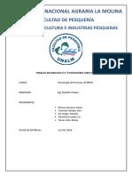 2doTECNOPAOLA.docx