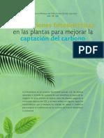 AdaptacionesFotosinteticas
