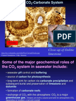 Carbonate System
