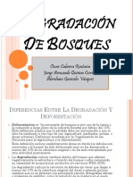Degradación de Bosques