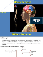 Aula-Sistema-Nervoso.ppt