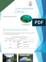 Nutrientes en Ambientes Acuáticos