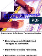 REGISTRO DE POZOS-  Interp de Registros_Form. Limpia