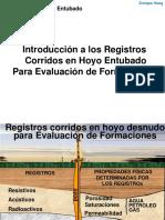 REGISTRO DE POZOS - Eval de Form en Hoyo Entubado