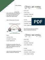 Como fazer cabos XLR com XLR.docx