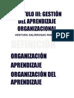 Presentación Organización Del Aprendizaje
