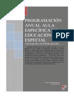 PROGRAMACIÓN AEE 2016- 17