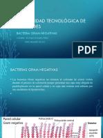 Universidad Tecnológica de Los Andes