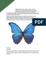Undp Co Informebiodiversidad 2014