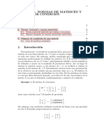 Normas de Matrices y Vectores