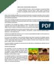 AGRICULTURA Y EXPORTACIÓN DE PRODUCTOS.docx