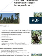 The Influence of Dwarf Mistletoe on Bird Communities in Colorado Ponderosa Pine Forests.