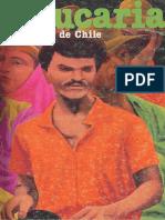 Araucaria N°41.pdf