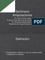 Seminario amputaciones.pptx