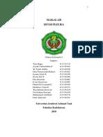 MAKALAH PLENO BLOK 12 EFUSI PLEURA.docx
