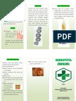 LEAFLET DERMATITIS.docx