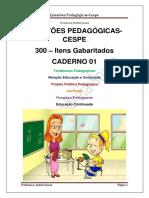 300 Questões Cespe - Pedagógicas
