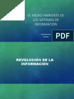 1.1-1.1.3 el medio ambiente en os sistemas de información