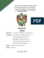 INFORME QUIMICA ORGANICA N°7 AMINAS.docx