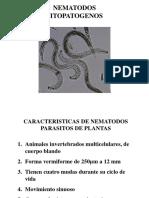Nematodos Characteristics