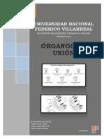 Órganos de Unión