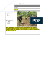Weekly Report_Template.docx