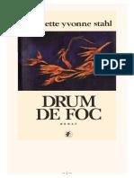 Drum de Foc #1.0~5