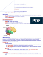 1 Cerebral Hemispheres