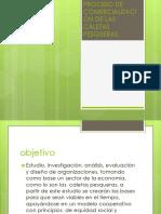 SEMANA 3 PROCESO DE COMERCIALIZACIÓN DE LAS CALETAS PESQUERAS.pptx