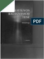 246957957 v Piesliakas Lietuvos Baudziamoji Teise 2 Knyga Justitia 2008