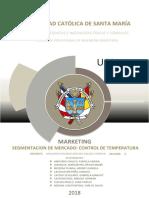 SEGMENTACIÓN-DEL-PRODUCTO.docx