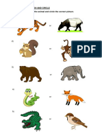 WORKSHEETS-ANIMALS.docx