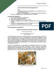 Atividade - Precursores Filosóficos Da Psicologia