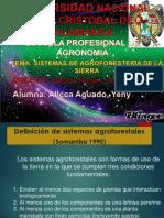 agroforesteria.ppt