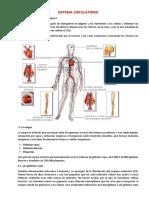 Sistemas Circulatorio, Respitaratorio y Excretor