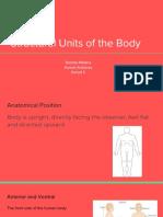 brenda melena-anatomy
